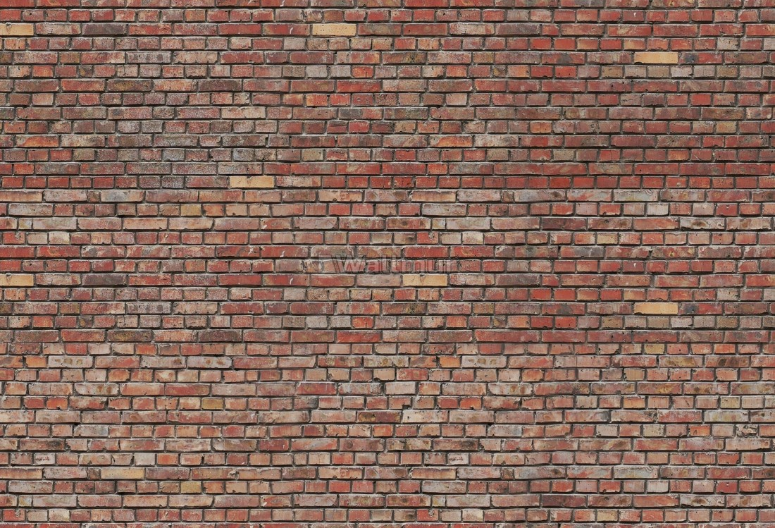 Old Brick Texture Street Art Wallpaper Mural Wallmur 174