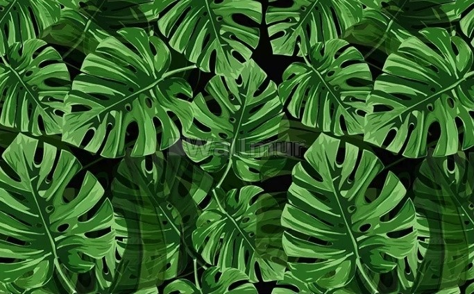 Green Tropical Leaves Wallpaper Mural Wallmur Rainforest tropical green leaves wallpaper wall murals, tropical palm leaves green tropical plants wall murals wallpaper for home decor. green tropical leaves wallpaper mural