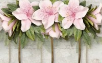 Pink Lily Flowers Wallpaper Mural