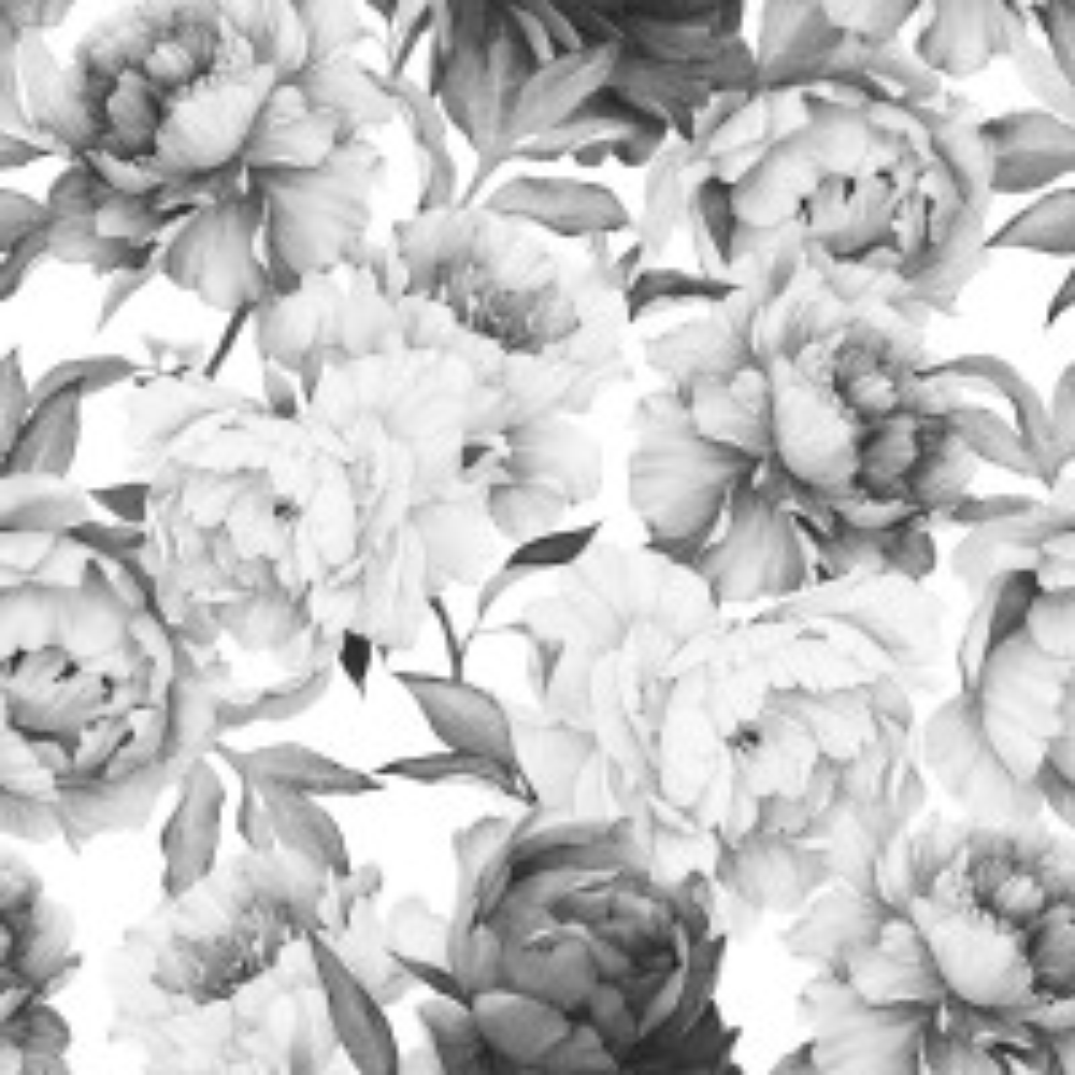 Dark Floral Charcoal Rose Flower Wallpaper Mural