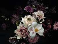 Dark Garden Florals Wallpaper Mural