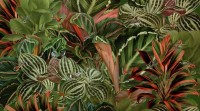 Tropical Rainforest with Little Birds Wallpaper Mural