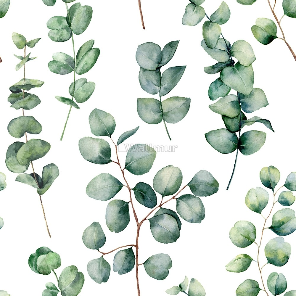 watercolor eucalyptus leaf wallpaper mural wp 7760570411ss 31482245
