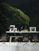 Aerial Nature Forest on Mountains View Wallpaper Mural