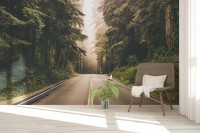 Highway with Forest Landscape Wallpaper Mural