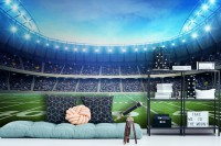 Soccer Football Sport Stadium Wallpaper Mural