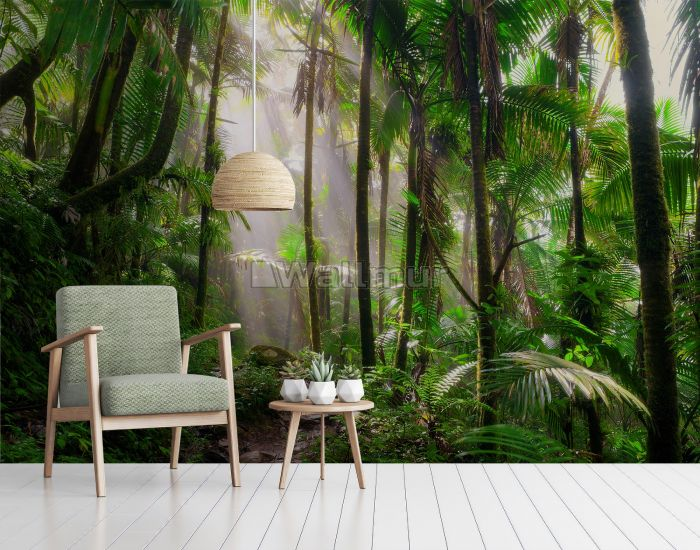 Tropical Forest Jungle Scenery Wallpaper Mural